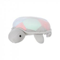 Pellush breshkë, L